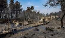 Πότε θα αποζημιωθούν οι αγρότες για τις κατεστραμμένες καλλιέργειες από την καταστροφική φωτιά στην Εύβοια