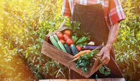 ΥΠΑΑΤ για ημέρα βιολογικής παραγωγής της ΕΕ